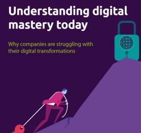 Understanding digital mastery today
