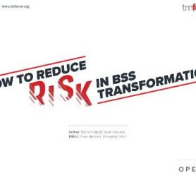Reducing Risk in BSS Transformation